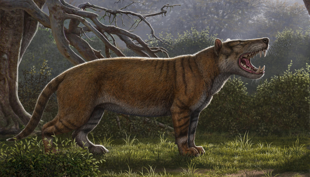 01-kenya-cat-simbakubwa-reconstruction