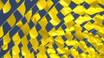 many small yellow flags
