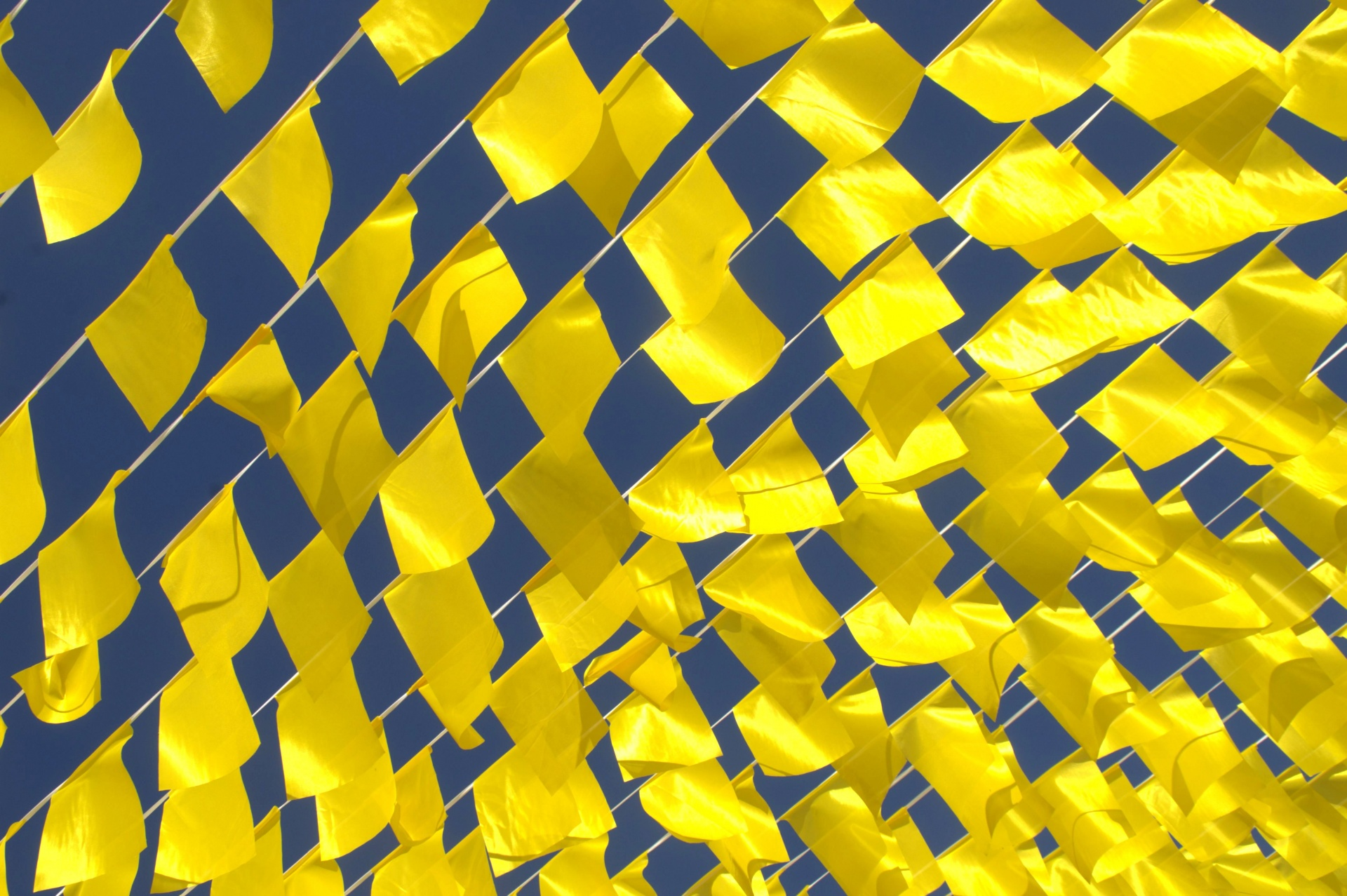 many-small-yellow-flags